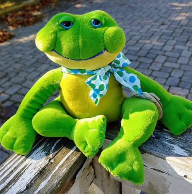 Jolly Froggy from Rose Garden Florist in Barnegat, NJ