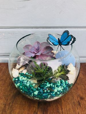 Coastal Succulent Bowl from Rose Garden Florist in Barnegat, NJ