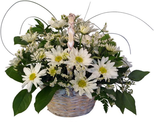Daisy Basket from Rose Garden Florist in Barnegat, NJ